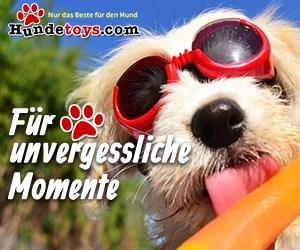 Produkte für den besten Freund: Unseren Hund